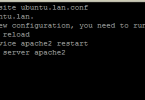 enable virtual host