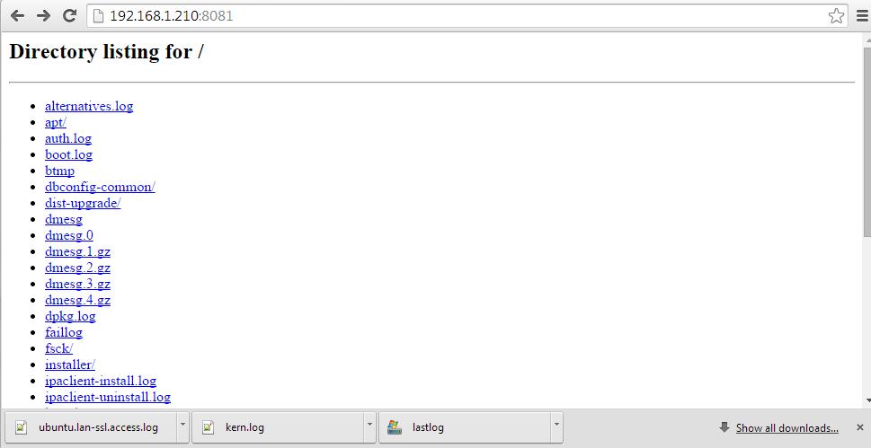 vist SimpleHTTPServer directory listing