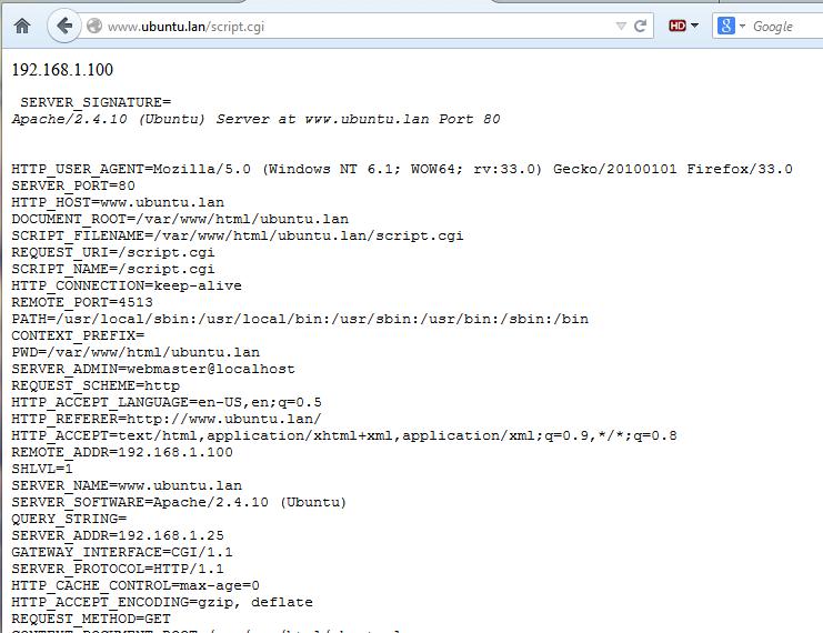 test bash cgi script