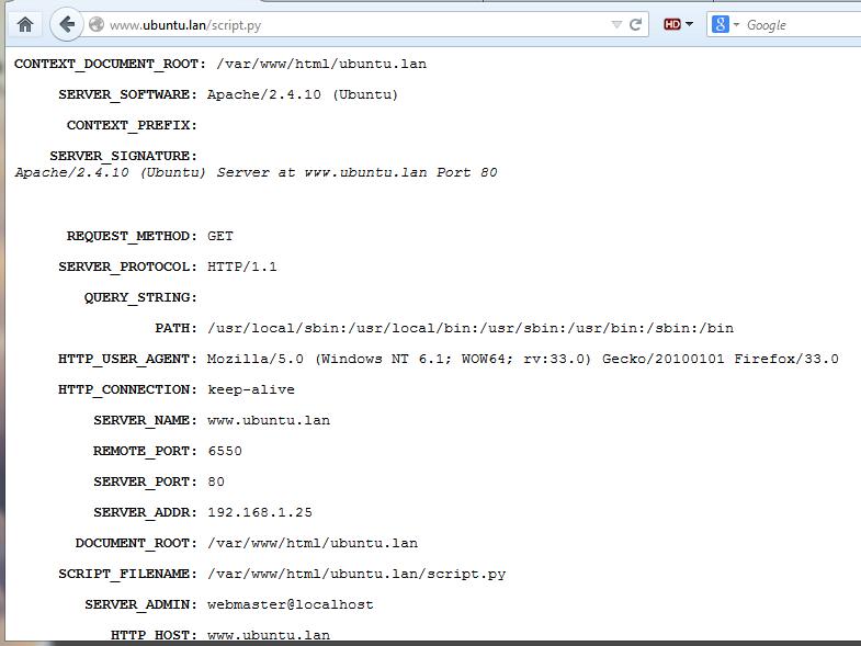 run cgi python script