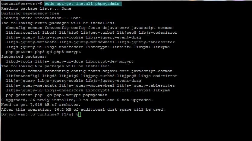 Install and Secure PhpMyAdmin on Ubuntu 19.04 Server