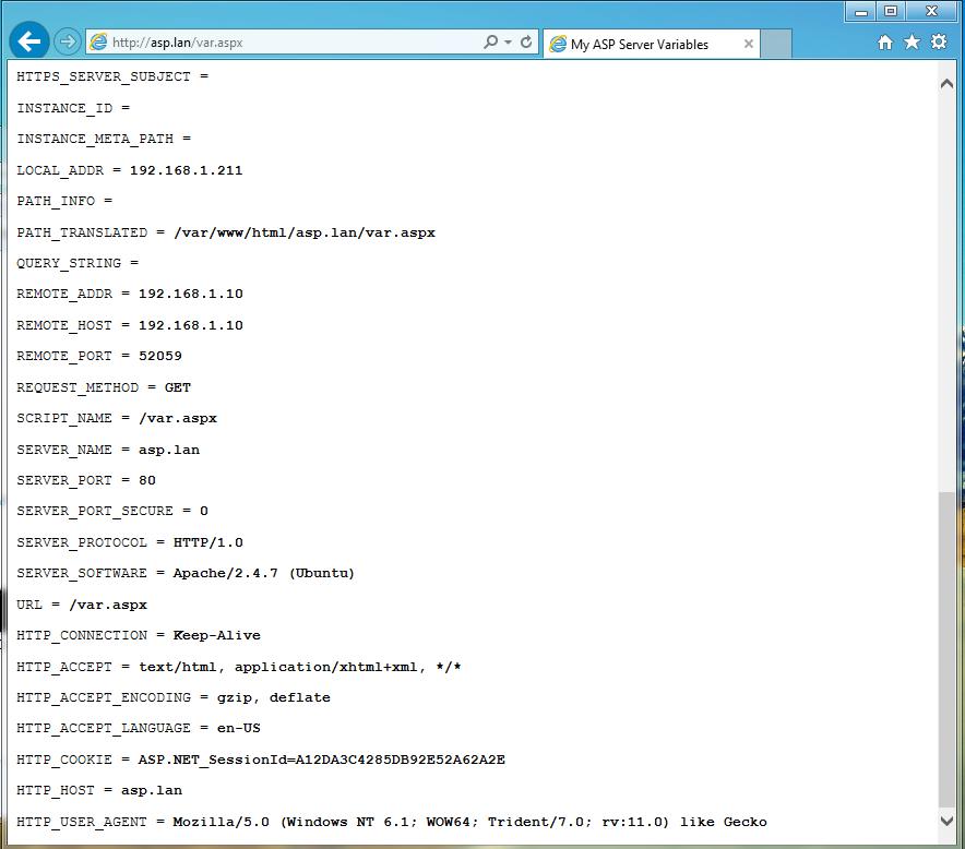 get ASP.NET server environment variables