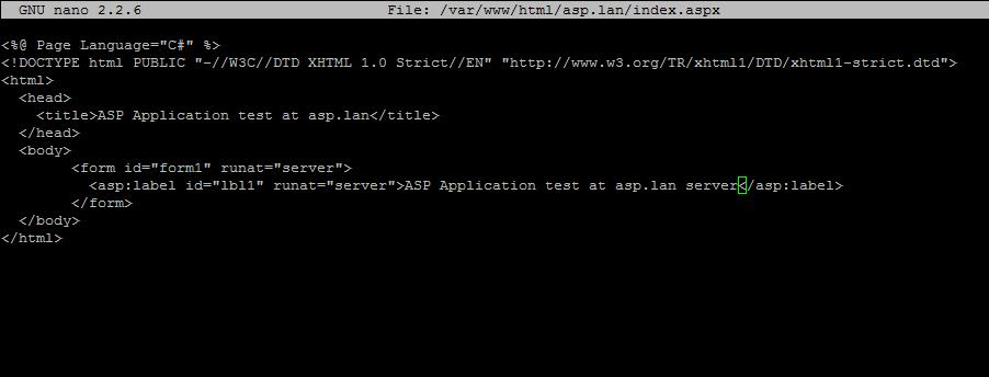ASP.NET index file