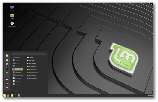 Install Linux Mint 19.1 in Dual-Boot with Windows 10 on UEFI Systems